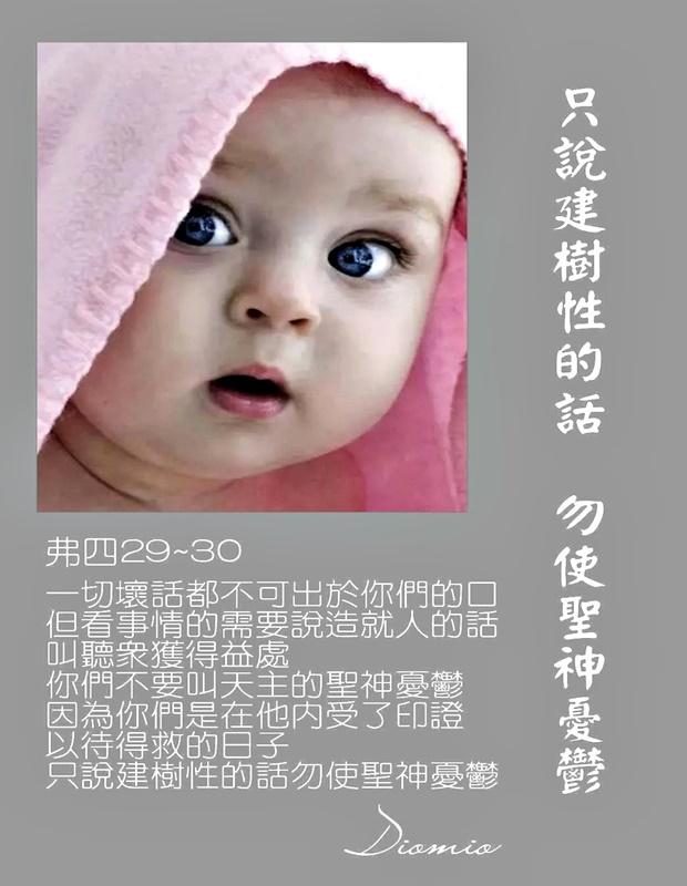 https://hualien.catholic.org.tw/uploads/tadgallery/2019_01_10/647_20190110029.jpg