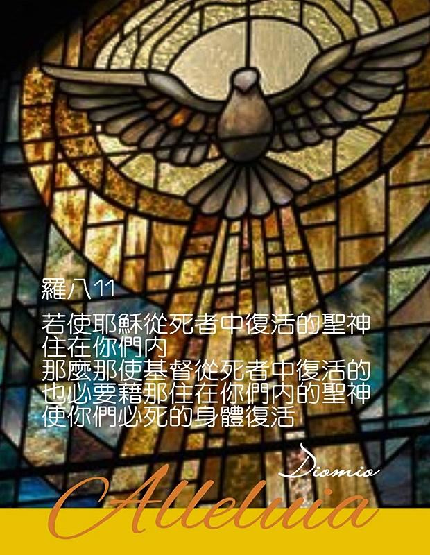 https://hualien.catholic.org.tw/uploads/tadgallery/2019_01_10/848_20190109058.jpg