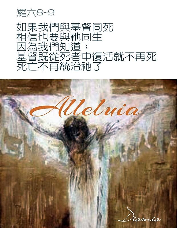 https://hualien.catholic.org.tw/uploads/tadgallery/2019_01_10/891_20190109056.jpg