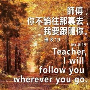 S__9838598.jpg